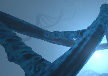 Çinli bilim adamları eksikliği otizme neden olabilen bir gen keşfetti