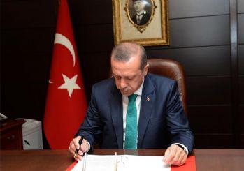 Cumhurbaşkanı danışmanlığına atama Resmi Gazete'de