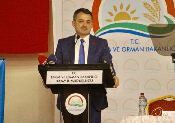 Tarım Bakanı Pakdemirli: Dağı taşı ekmeliyiz