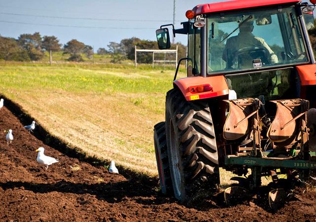Çiftçilere online destek! e-Çiftçi sistemi geliyor