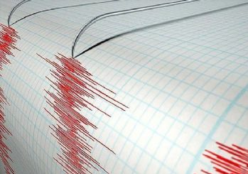 Erzincan 4.1'lik depremle sallandı