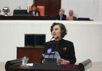HDP, Çankaya için aday çıkardı! 7 ilde de aday göstermedi