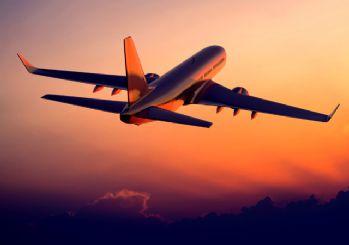 Bebeğini havalimanında unutunca uçağı geri döndürdü