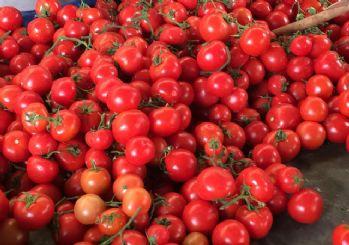 Antalya'da domates fiyatları arttı! Irak'a bağlandı