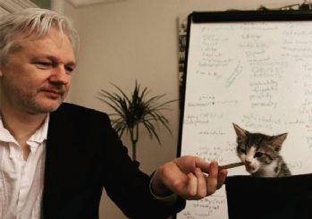 Assange'ın kedisi de casuslukla suçlanıyor!