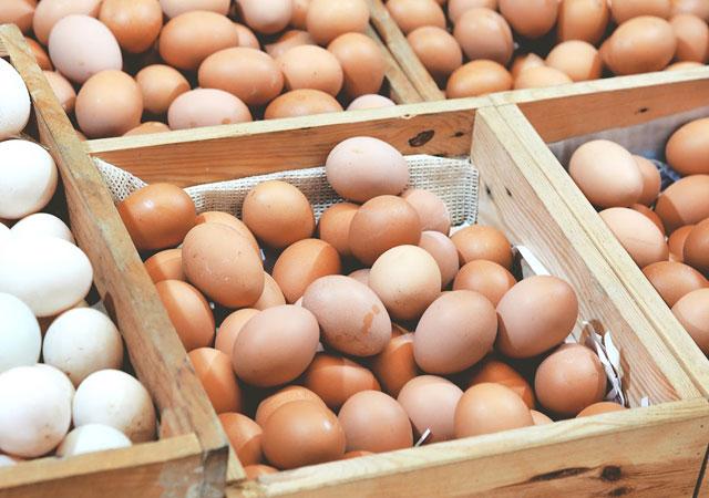 Yumurta üreticisine destek!