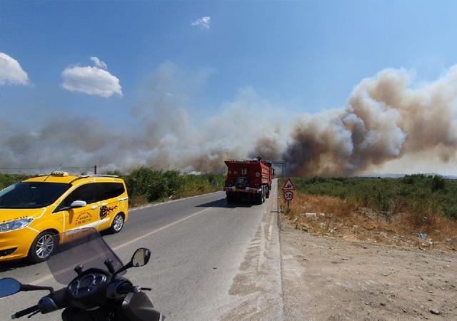 Edremit'te yangın! Sahil alev alev