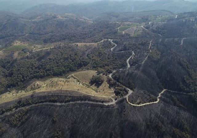 Tunç Soyer: 500 değil 5 bin hektar yandı!