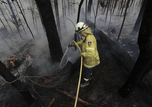 Avustralya'dan aylar sonra iyi haber: Yangınların bir kısmı kontrol altına alınabildi