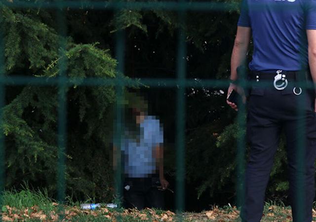 İstanbul'da ağaca asılı ceset bulundu