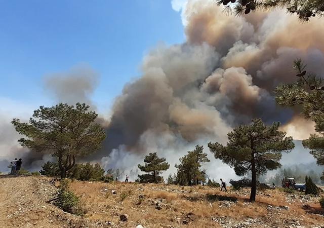 5 ilde yangın sürüyor! Ege'de alevler durmuyor