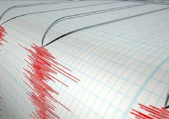 Sakarya'da 4,6 büyüklüğünde deprem! İstanbul'da hissedildi