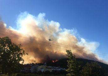 İzmir Dikili'de korkutan orman yangını