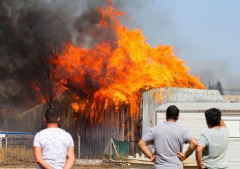 İzmir'de ahşap palet fabrikasında yangın!