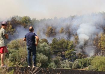 Antalya'da iki bölgede yangın