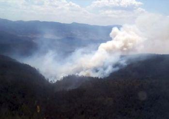 Orhaneli'deki yangın büyümeden söndürüldü