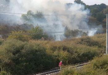 İstanbul'da ağaçlık alanda yangın!