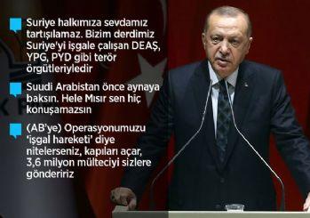 Barış Pınarı Harekatı ile ilgili Erdoğan: 109 terörist öldürüldü!