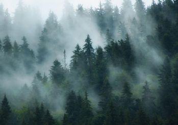Meteoroloji'den pus ve sis uyarısı