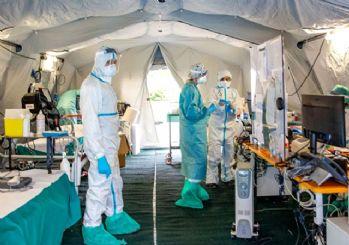 Koronavirüse karşı ilaç çalışmaları devam ediyor