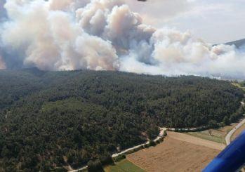Gelibolu Yarımadası'ndaki orman yangınına havadan müdahale yeniden başladı