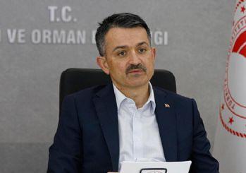 Tarım Bakanı Pakdemirli: Fındık fiyatını Cumhurbaşkanımız açıklayacak