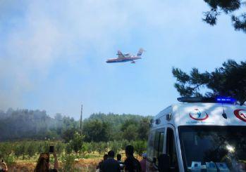 Antalya'da orman yangını! Sera alanları tehdit altında