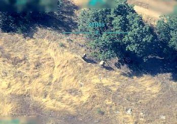 Orman yakan Teröristler İha'ya Yakalandı