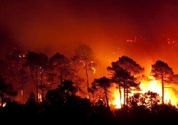 Ciğerlerimiz yanıyor! 4 ilde orman yangını