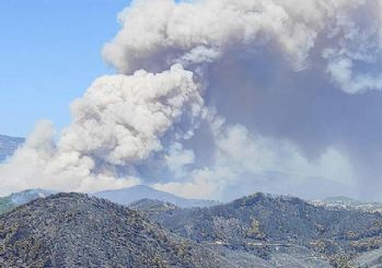 Hatay'daki orman yangını beşinci gün kontrol altına alındı