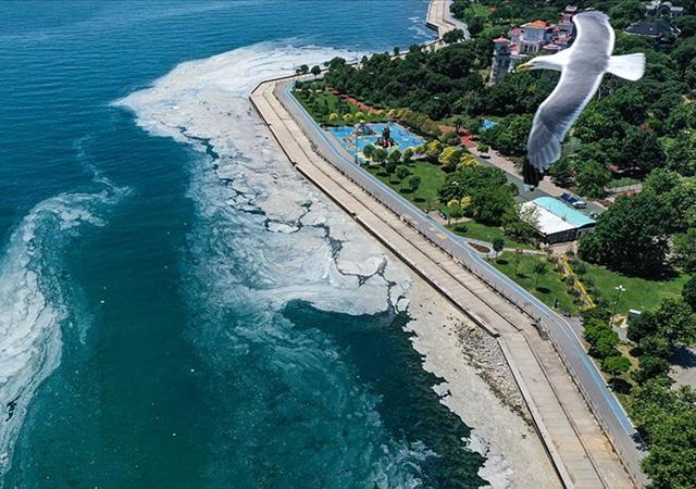 Marmara Denizi koruma altına alınıyor