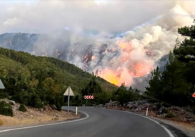 Erdoğan: Yangından etkilenen yerler Afet Bölgesi ilan edildi