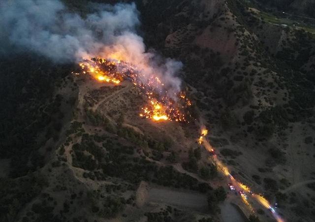 Orman yangınlarında son durum: 9 yangın devam ediyor
