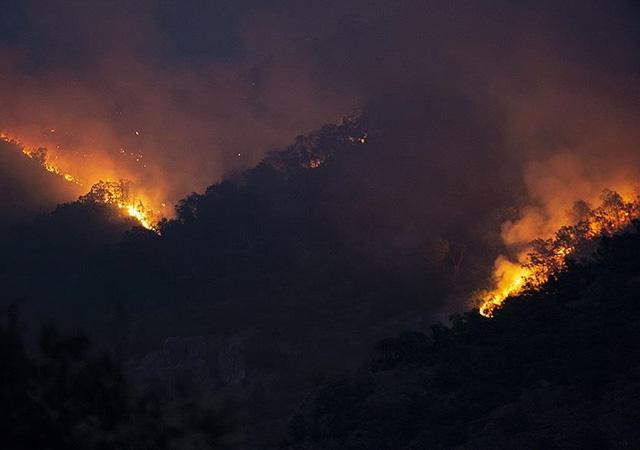 9 ildeki tüm yangınlar söndürüldü