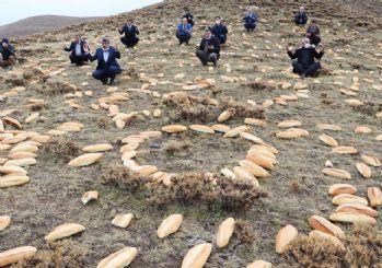 Erzurum'da doğaya yine 2001 ekmek bıraktılar