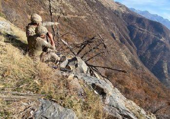 Bitlis'te Yıldırım-16 Sehi Ormanları Operasyonu başladı