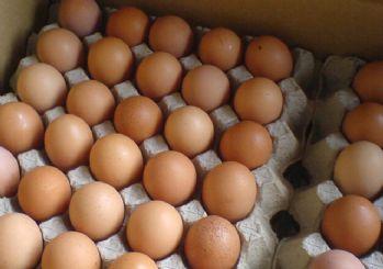 Yumurta fiyatı tavuğu geçti