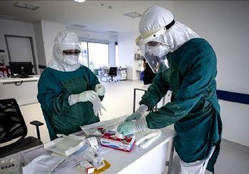 Türkiye'de corona virüsten son 24 saatte 278 can kaybı, 14 bin 497 yeni vaka 11 mayıs 2021