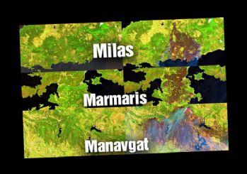 Bodrum, Manavgat ve Marmaris'ten yürek burkan görüntü