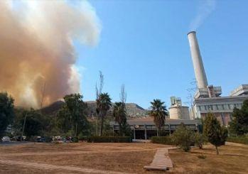Yangın yeniden başladı! Alevler termik santrali tehdit ediyor
