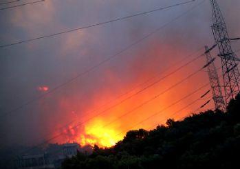 Milas'taki yangın termik santrale ulaştı