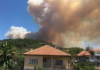 Bekir Pakdemirli: Tüm yangınlar kontrol altına alındı