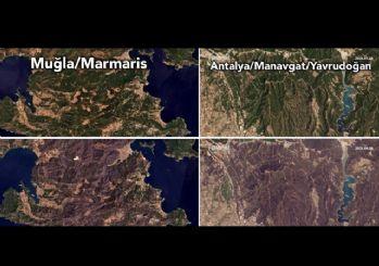 Orman yangınlarının tahrip ettiği alanların uydu görüntüleri yayımlandı