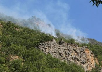Tunceli ve Bingöl'de orman yangını