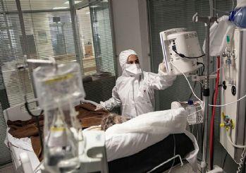 Türkiye'de corona virüsten son 24 saatte 252 can kaybı, 21 bin 893 yeni vaka 31 Ağustos 2021