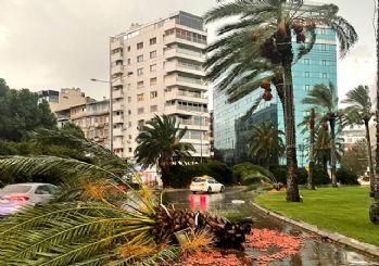 İzmir'i kuvvetli sağanak ve rüzgar vurdu! Çatılar uçtu, ağaçlar devrildi