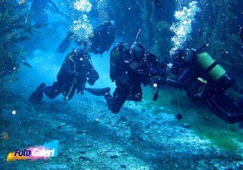 Balık adamlardan doğal akvaryuma büyük ilgi