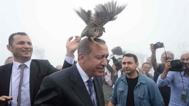 erdogan_141_1