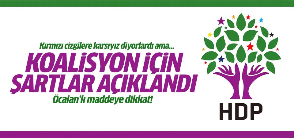İşte HDP'nin koalisyon şartları