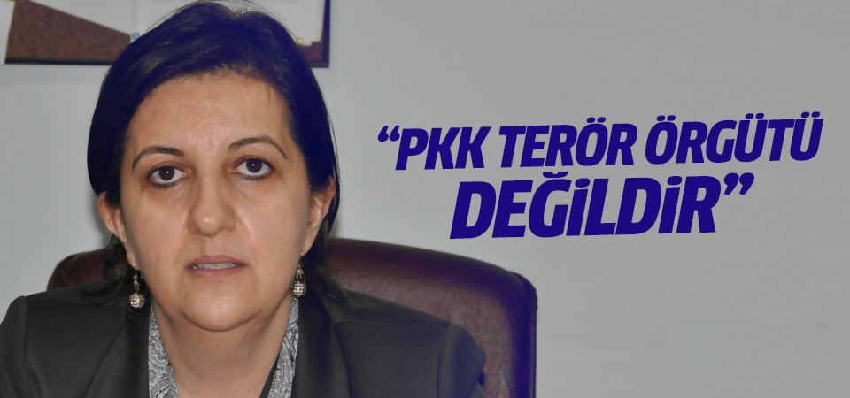 ''PKK terör örgütü değildir''